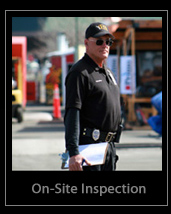 On-Site Inspection Services